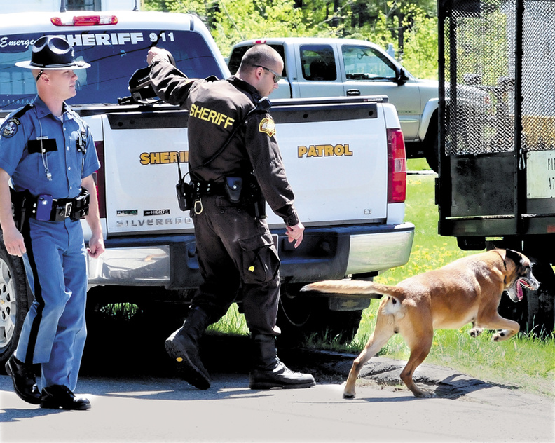 Police unleash a tracking dog named Ruger after suspect Ernest Almeida abandoned his vehicle and entered the woods behind a Middle Road residence in Skowhegan following a high speed chase with police on Wednesday.