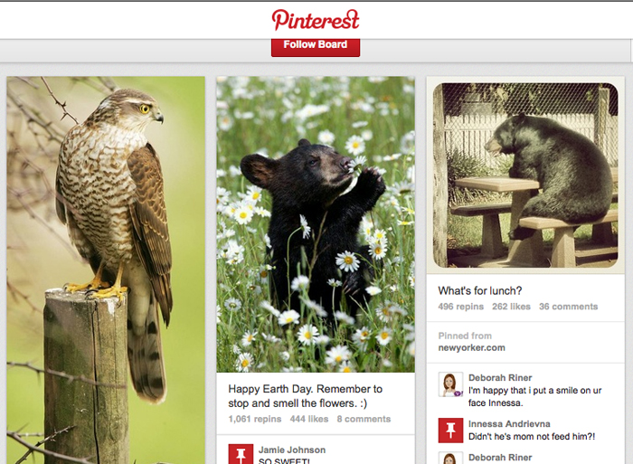 """This screen image shows L.L. Bean's """"Woodland Creatures"""" board on Pinterest."""