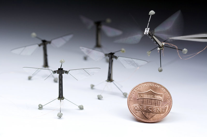 Robotic flies, shown with a penny to indicate their size, could one day aid in search-and-recovery efforts. Under development at Harvard University, they are examples of biologically inspired technology.
