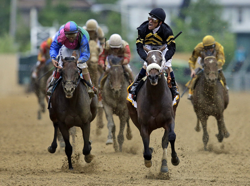 Jockey Gary Stevens, riding Oxbow, lets out a celebratory yell after winning the Preakness Stakes Saturday at Baltimore. Orb, the Kentucky Derby winner, finished fourth.