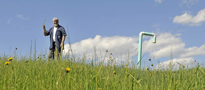 Johnny Thomas stands with some native flowers next to a methane vent on top of the landfill at the Oakland transfer station on Wednesday. Thomas is spearheading a special habitat for migrating monarch butterflies and hummingbirds on the grassy dump mounds, with a $1,000 donation from the Lions Club.