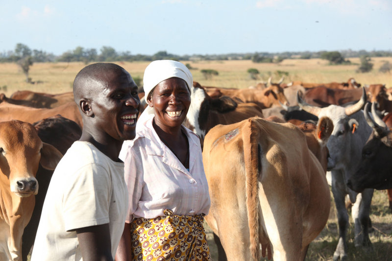 "Nerwande Chirovzvo and his mother, Christine, stand among their cattle near Harare, Zimbabwe. The nation's first ""Cattle Bank"" has just opened, where depositors can get loans of an equal value of the cattle they have put in the bank."