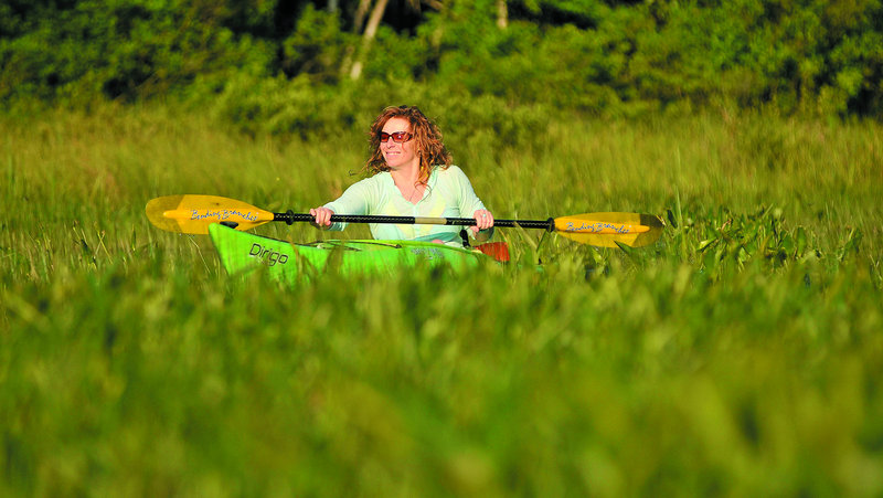 Christine Keller paddles through a section of the Serpentine waterway, a three-mile waterway that cuts across a peat bog as it connects East Pond and North Pond and is home to a sandhill crane. Speeding boaters and Jet Skiers along the Serpentine waterway may be unwittingly threatening a comeback by the sandhill crane, a species that recently returned to Maine after being pushed to the brink of extinction.