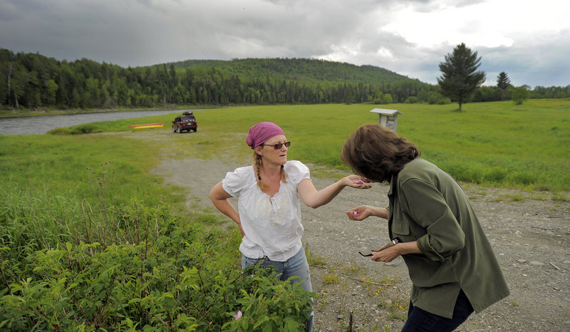 Cathie Pelletier stops to smell the flowers with Darlene Kelly Dumond, a childhood friend.