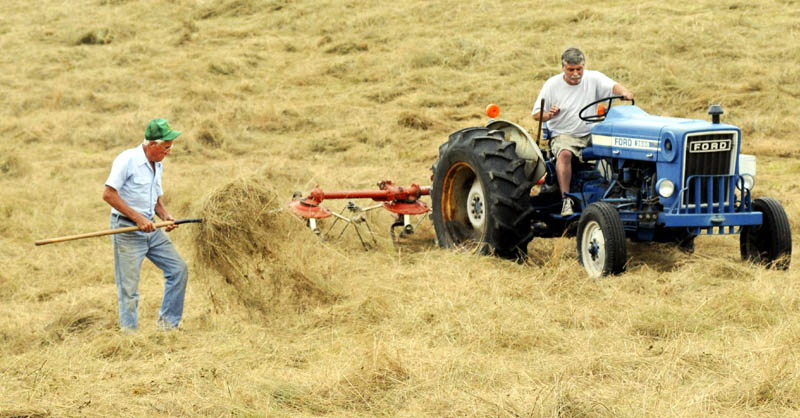 Maynard Whitten checks the dryness of hay with a pitchfork that his son, Dwight, teds with a tractor Monday, July 22, 2013 at their Manchester, Maine farm. The Whitten's have only cut 10 of the 60 acres of fields at the farm for hay this season because of heavy, consistent rainfall.