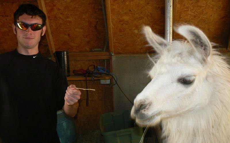 Accused Colorado gunman James Holmes poses with a llama in this photograph submitted with his application to graduate school at the University of Illinois. Holmes was a promising graduate student in neuroscience at the University of Colorado, Denver, but a psychiatrist treating him at the school said he had threatened her.