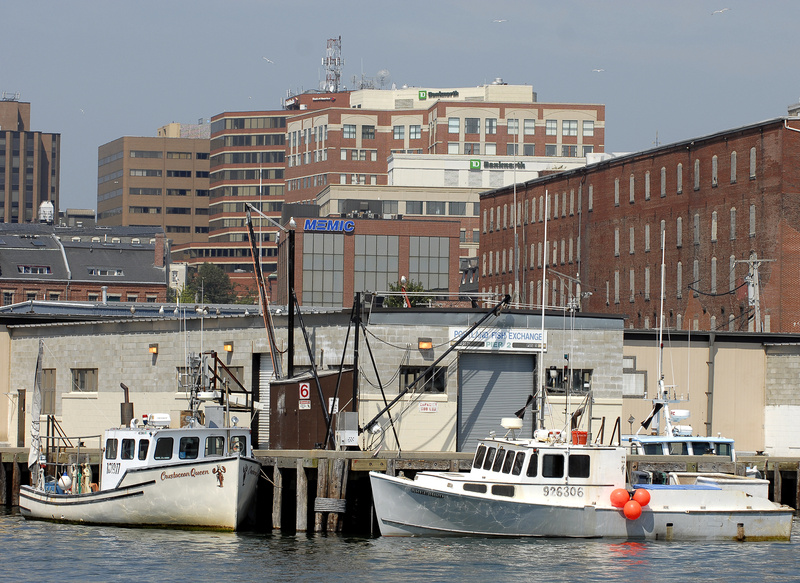 In this 2007 file photo, the Portland skyline looms over the Portland Fish Pier. Climate change is only one of several threats to New England fisheries, and it might not even be the most serious, scientists and policy makers said at a symposium Thursday, August 1, 2013 in Portland.