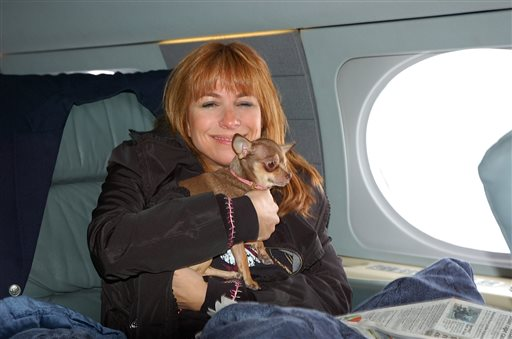 """This undated photo shows """"The Real Housewives of New York City"""" actress Jill Zarin, aboard a private jet with her Chihuahua, Ginger, on their way to Los Angeles. In the past decade, Zarin and Ginger have each logged about a quarter-million commercial and private sky miles, she says."""