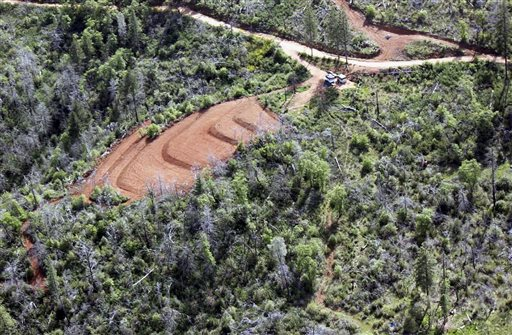 In this undated photo released by Butte County Department of Public Works, marijuana grading violations are seen on a hillside less than 1,000 feet from the west branch of the Feather River off of Jordan Hill Road in the Concow area in Butte County, Calif.