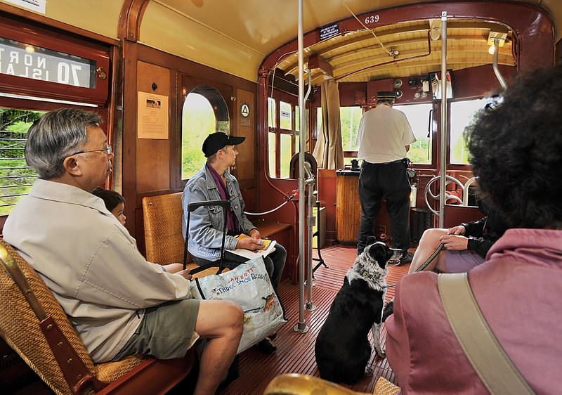 Passengers and even their dogs can ride the Seashore Trolley into the Kennebunkport Conservation Trust's 1,100-acre Smith Preserve, where a lush habitat teeming with wildlife can be appreciated by visitors to the popular coastal community.