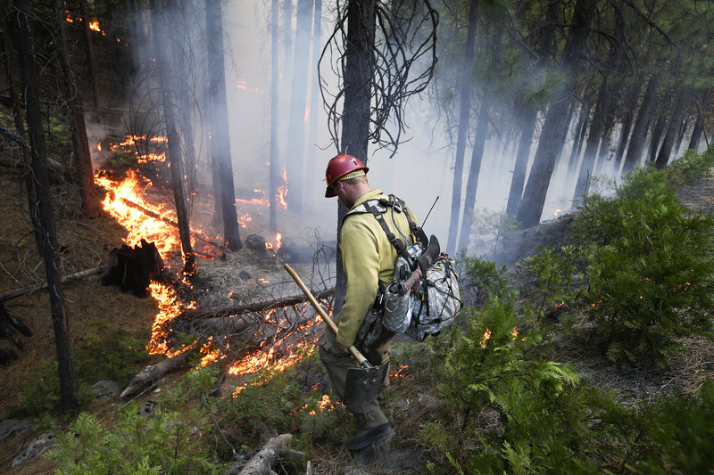 Firefighter Russell Mitchell monitors a back burn during the Rim Fire near Yosemite National Park, Calif., earlier this week.