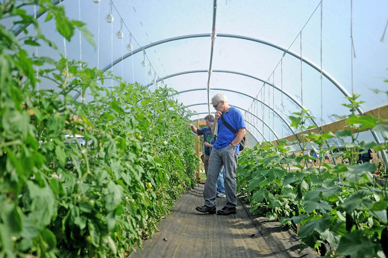 Bart Cory of Portlan, tours a greenhouse on display at the Common Ground Country Fair in Unity on Saturday.