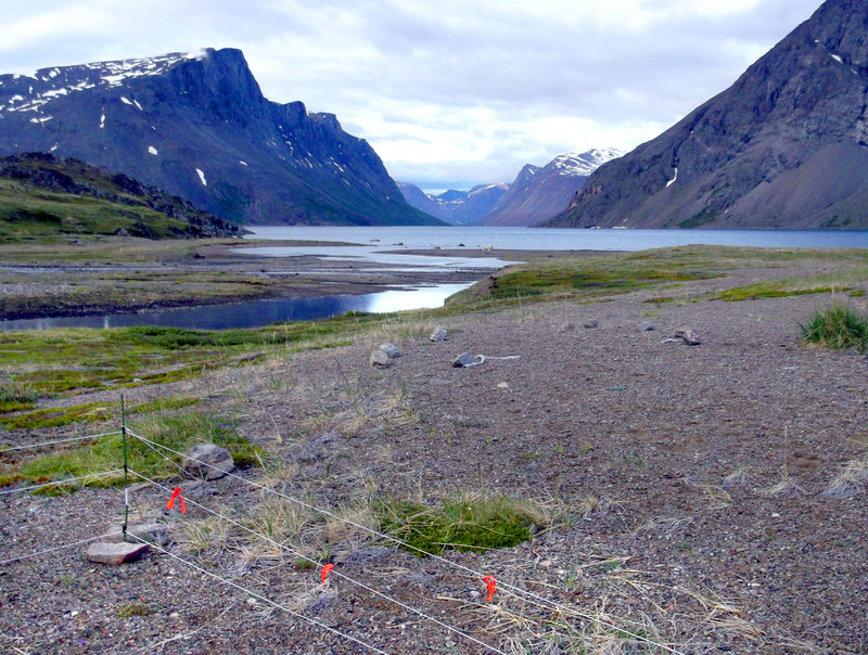 Torngat Mountains National Park in northern Labrador is where Matt Dyer's group ventured. They used an electric fence, lower left in photo, at their campsite to ward off polar bears, but it did not prevent the attack on Dyer.