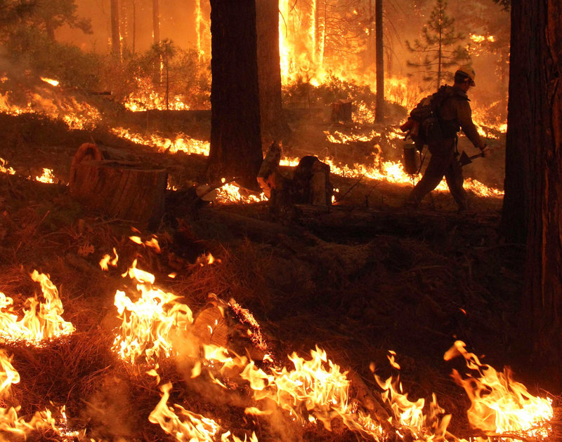 In this Friday, Aug. 30, 2013 file photo provided by the U.S. Forest Service, a member of the Bureau of Land Management Silver State Hotshot crew from Elko, Nevada, walks through a burn operation on the southern flank of the Rim Fire near Yosemite National Park in Calif. The wildfire burning in and around Yosemite National Park has become one of the largest conflagrations in California history. (AP Photo/U.S. Forest Service, Mike McMillan)