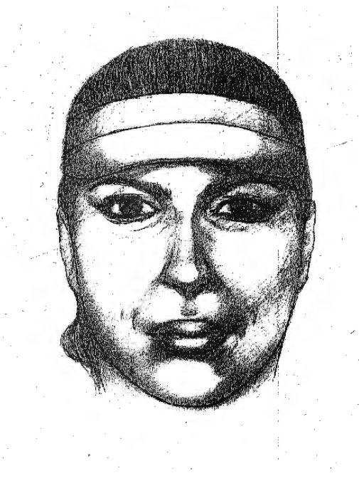 Police sketch of
