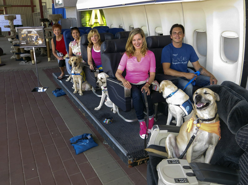 "Megan Blake, center, the Air Hollywood K9 Flight School director, is seen with her dog, Super Smiley, far right. The other dogs and ""passengers"" are with the Canine Companions for Independence program, as they sit on board a flight simulator at the America's Family Pet Expo in Costa Mesa, Calif."
