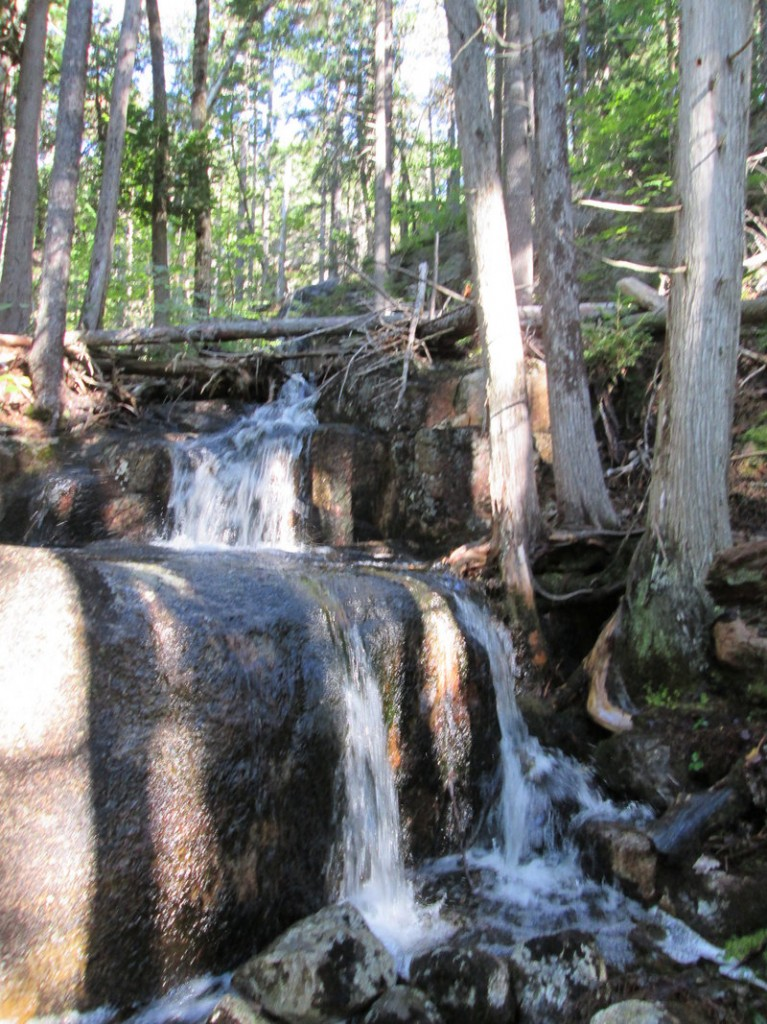 The summit trail rises over a series of ridges, by and across a couple of musical streams with one featuring a photogenic waterfall.