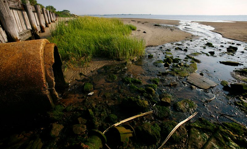 A drain pipe empties into Jamaica Bay in Brooklyn, N.Y. Runoff containing phosphorous, nitrogen and urban pollution is feeding algae blooms across the country that are threatening wildlife and recreation.
