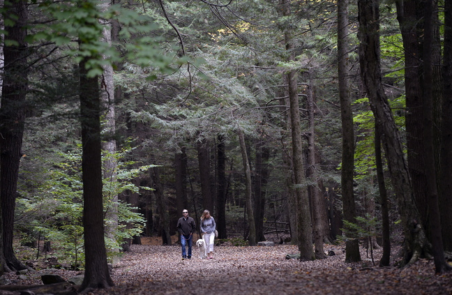 John and Barbara Capasso of Falmouth walk with their dog Phoebe in Mayor Baxter Woods in Portland Friday.