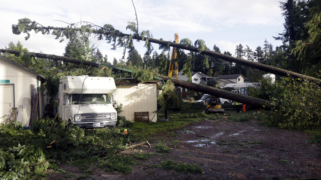 Trees that fell on outbuildings and a trailer when a tornado passed through the area earlier in the day are shown Monday in the Frederickson neighborhood near Puyallup, Wash. Several dozen homes were damaged in the storm.