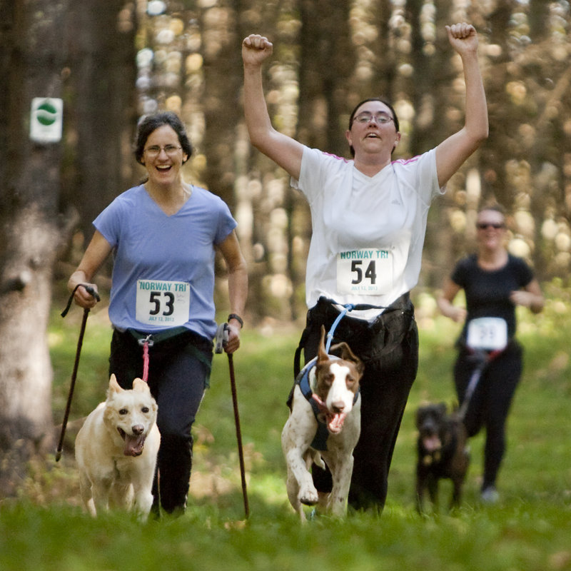 Jocelyn Bradbury of Oxford throws her arms up while cometing with her dog, K.T., at Roberts Farm Preserve last weekend. Fellow competitors Betsy McGettigan with pup Hillary, left, and Liz York with Moe, keep pace.