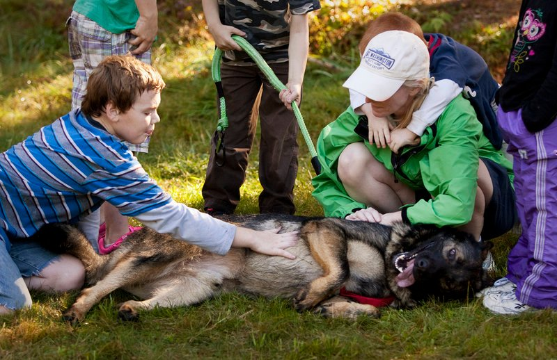 A well-deserved tummy rub is applied by Ben Hodgkins, 12, of Norway, after the fourth annual Canine Cross on the trails of the Roberts Farm Preserve in Norway last weekend.