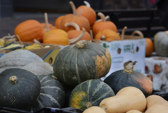 Growers say that a lot of squash varieties taste better now than when they were freshly harvested in September.