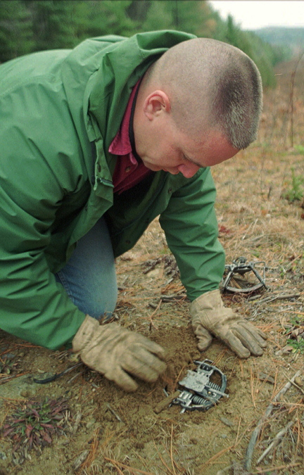 A trapper sets a device in the ground that's equipped with rubber jaws designed to capture an animal without injuring it.