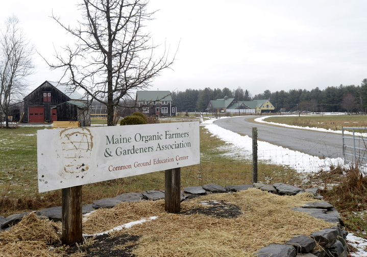 The Maine Organic Farmers & Gardeners Association, a nonprofit based in Unity that had a group plan through Dirigo, is analyzing whether to buy another small group plan or to direct employees to the individual market.