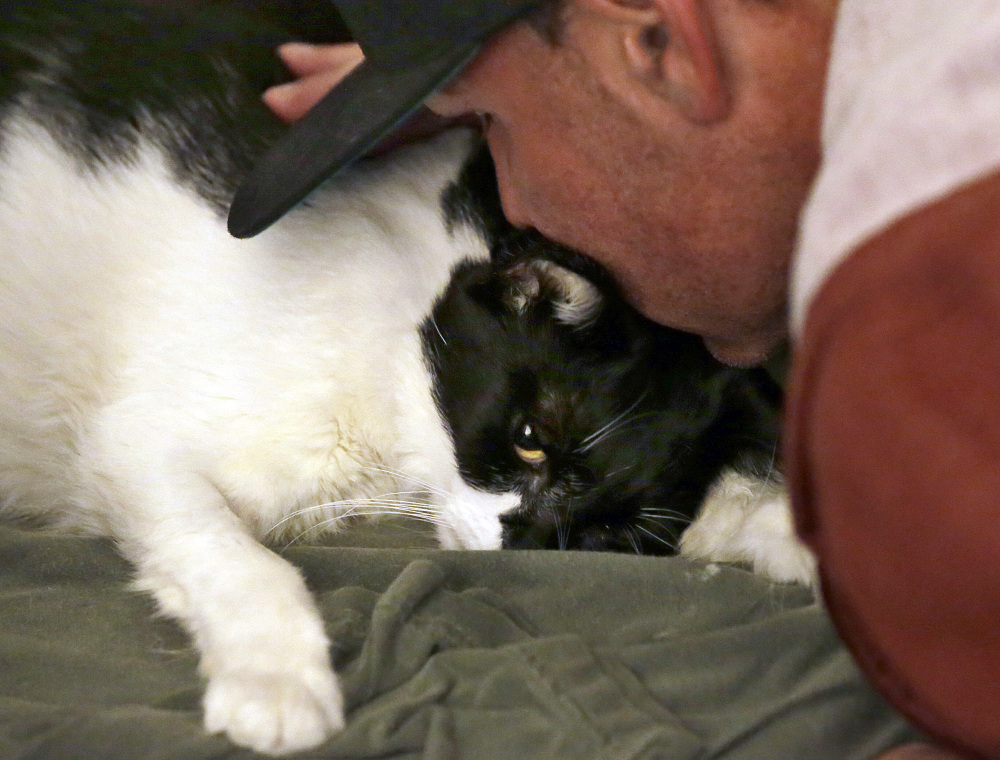 """Mike Kelley gives his cat Andy a final kiss after veterinarian Dr. Mary Gardner gave the 10-year-old cat an injection, in Newport Beach, Calif. """"Everything went as smoothly as it could go,"""" Kelley said."""