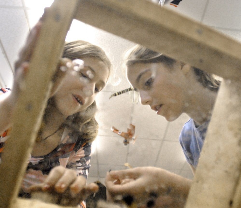 "Freeport Middle School students Kali Adams and Madison Burgess find fossils after sifting through a screen during a 2006 class. A reader says she backs the breakup of RSU 5, citing the ""systematic watering-down of program offerings"" under consolidation."