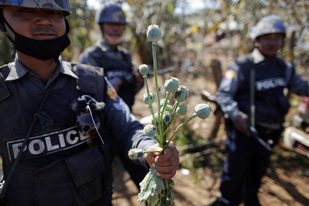 Despite police and government efforts to stop opium production in Myanmar, a U.N. drug and crime agency says production has actually risen 26 percent over 2012 output.