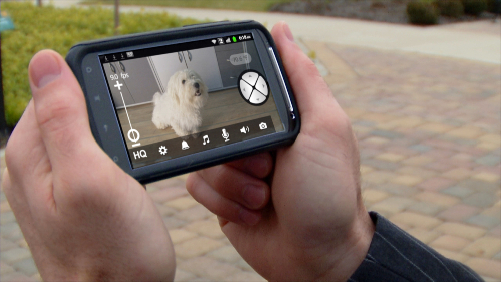 Here's a view displayed by Motorola's Scout1 Wi-Fi Pet Monitor, a gadget that lets pet lovers keep an eye on their pets while they're away.