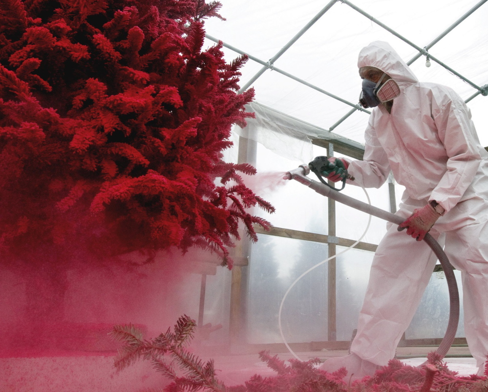 Charles Banks flocks a Christmas tree in red at Charlie's Produce and Nursery in Yorktown, Va.