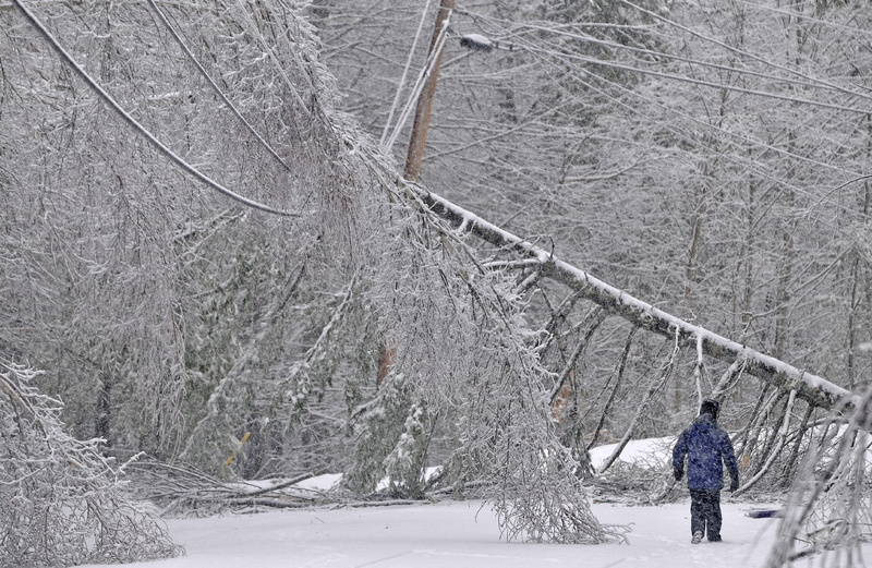 Karen Gibbs walks through a labyrinth of icy broken trees and downed power lines to her home on Maplehurst Drive in Belgrade on Thursday. Residents of Maplehurst Drive lost electricity Monday.