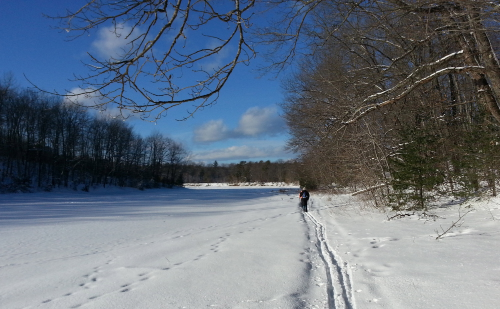 Trails at Otter Ponds in Standish are ungroomed, but the presence of snowmobiles helps pack down the trails.