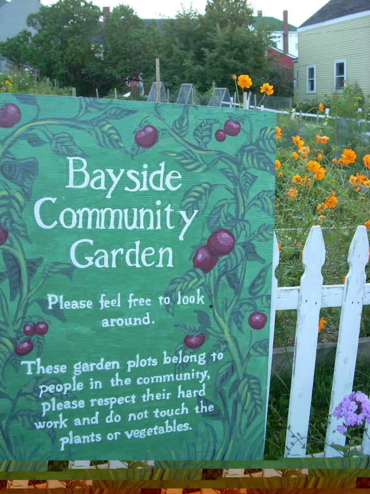 A Bayside garden is one of nine community gardens in Portland. The city has a waiting list of would-be gardeners.