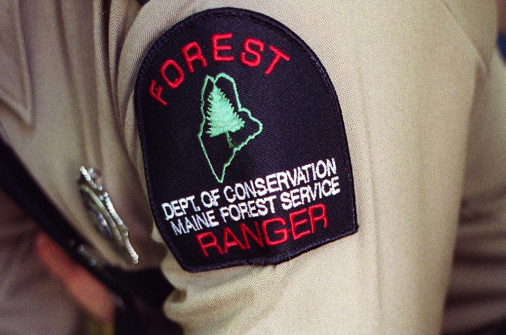 A task force's inquiry has shown that the duties of forest rangers have expanded beyond forest management and fire suppression to include investigating timber theft, illegal harvesting and other activities that often involve dangerous people.