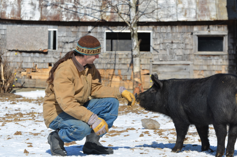 David Zuckerman, a farmer and Vermont state senator, has sponsored legislation to require labeling of genetically modified foods in his state. The pigs on his farm near Hinesburg eat only certified organic grain grown without GMOs. Maine passed a bill requiring GMO labeling last fall, but it won't take effect unless New Hampshire approves the same requirement.