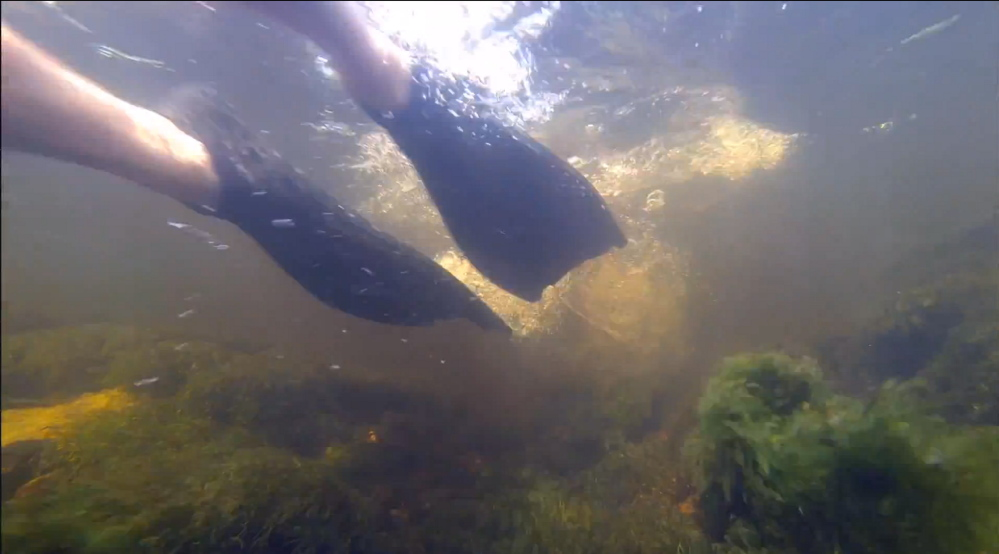 """""""Underwaterguy"""" features a monologue by Stephen Underwood interspersed with underwater photos and video of the actor."""