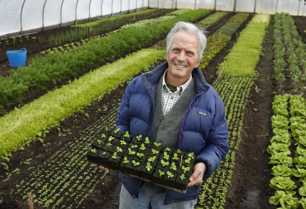 Longtime organic farmer Eliot Coleman poses for a photo in one of the greenhouses at Four Season Farm in Harborside in March.