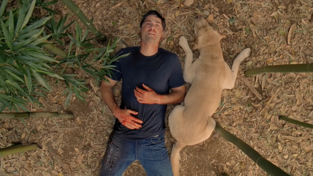 "Jack, played by Matthew Fox, in a scene from the finale of ""Lost."""