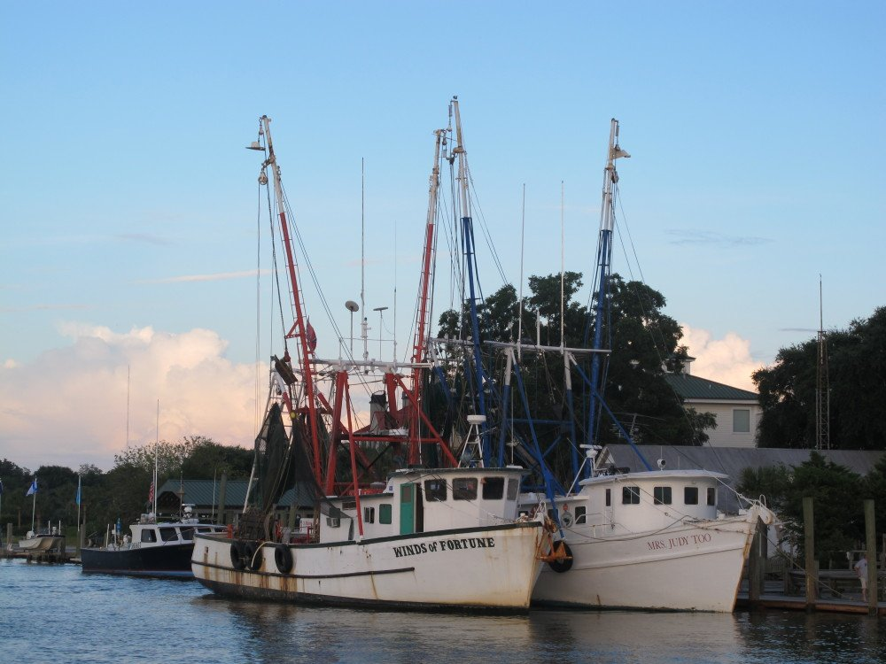 Shrimp boats sit at dock in Mount Pleasant, S.C., last summer. Consumers should question whether the shrimp they're buying is fresh and local as advertised.
