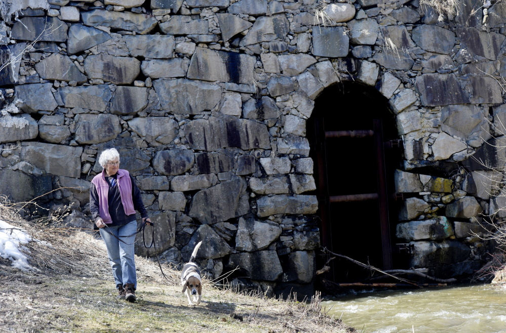 Sue Littlefield walks with her dog Gracie near Stackpole Bridge, which she is working to save as president of a new nonprofit.