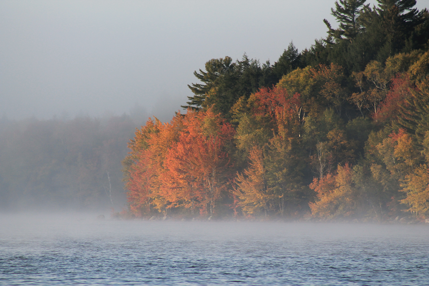 An early mist rises over Great Pond with October's vivid colors on display, and Diane McMaster of Falmouth was there to capture the image.