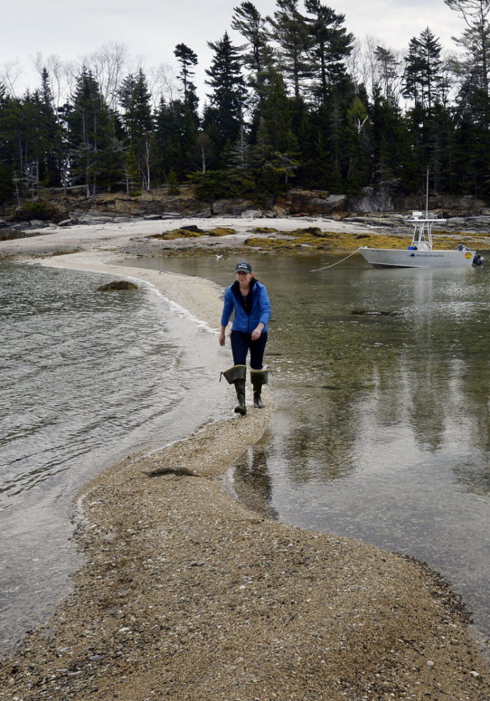 A sandbar between East and West Gosling islands allows Amanda Devine, regional land steward of the Maine Coast Heritage Trust, a crossing at low tide.