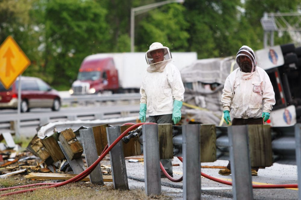 Workers wear protective gear after a tractor-trailer overturned, spilling a load of 16 million to 20 million honeybees Tuesday near Newark, Del. The hives were destined to pollinate fields owned by Allen's Blueberry Freezer Inc. of Ellsworth.