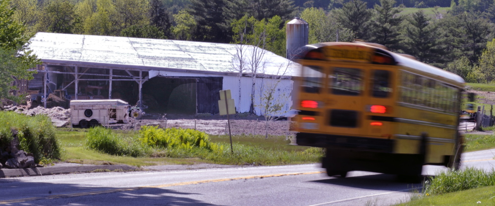All the cows were gone Thursday from the Readfield farm belonging to Edward Munson. The cows were taken away by trucks following a collision with a bovine in front of the farm on Saturday. Kennebec Journal/Andy Molloy