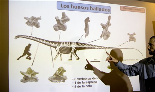 Paleontologist Pablo Gallina points to an illustration that reads in Spanish