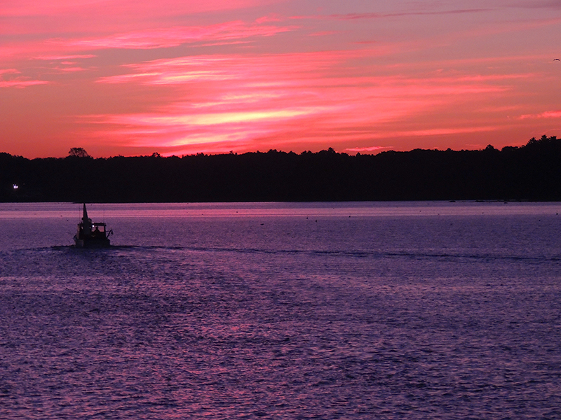 A lobsterman goes out as the sun comes up over Chebeague Island. Taken from the Chebeague Island Ferry dock on Cousins Island. Linda Rogoff, Portland.